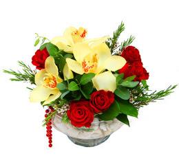 Muş çiçek gönderme  1 adet orkide 5 adet gül cam yada mikada