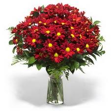 Muş çiçek yolla  Kir çiçekleri cam yada mika vazo içinde