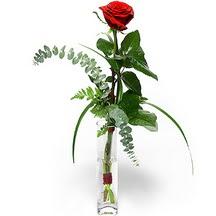 Muş 14 şubat sevgililer günü çiçek  Sana deger veriyorum bir adet gül cam yada mika vazoda