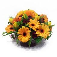 gerbera ve kir çiçek masa aranjmani  Muş çiçek siparişi vermek