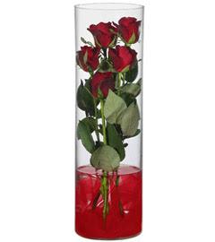 cam içerisinde 7 adet kirmizi gül  Muş çiçekçiler