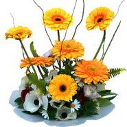 camda gerbera ve mis kokulu kir çiçekleri  Muş çiçekçi telefonları