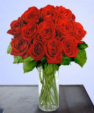 Anneme 12 adet cam içerisinde kirmizi gül  Muş çiçek siparişi sitesi