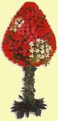 Muş çiçek gönderme  dügün açilis çiçekleri  Muş çiçek online çiçek siparişi
