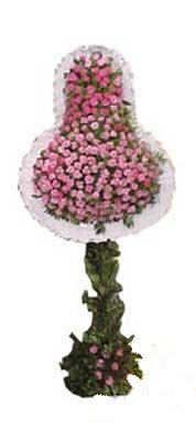 Muş ucuz çiçek gönder  dügün açilis çiçekleri  Muş internetten çiçek siparişi