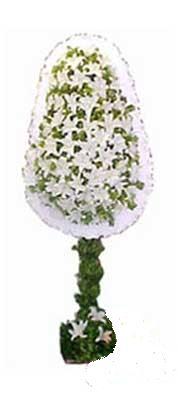 Muş çiçek siparişi sitesi  nikah , dügün , açilis çiçek modeli  Muş online çiçek gönderme sipariş