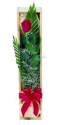 1 adet kutuda kirmizi gül  Muş çiçek gönderme sitemiz güvenlidir