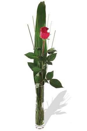 1 adet cam vazo içerisinde kirmizi gül  Muş çiçek , çiçekçi , çiçekçilik
