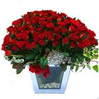 Muş çiçekçiler   101 adet kirmizi gül aranjmani