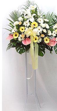 Muş online çiçek gönderme sipariş   perförje çiçegi dügün çiçekleri