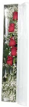 Muş çiçek siparişi sitesi   5 adet gülden kutu güller