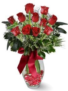 9 adet gül  Muş internetten çiçek satışı  kirmizi gül