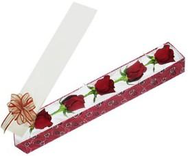 Muş internetten çiçek satışı  kutu içerisinde 5 adet kirmizi gül