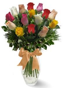 15 adet vazoda renkli gül  Muş internetten çiçek satışı