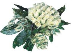 Muş internetten çiçek siparişi  9 Beyaz gül Özel kisiler için
