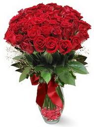 19 adet essiz kalitede kirmizi gül  Muş 14 şubat sevgililer günü çiçek