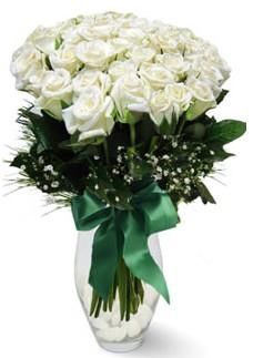 19 adet essiz kalitede beyaz gül  Muş çiçekçiler