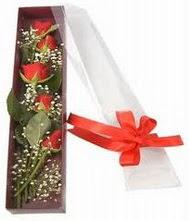 kutu içinde 5 adet kirmizi gül  Muş internetten çiçek siparişi