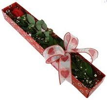 Tek kirmizi gül kutu içerisinde  Muş güvenli kaliteli hızlı çiçek
