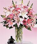 Muş çiçek yolla , çiçek gönder , çiçekçi   Kazablanka biçme vazoda