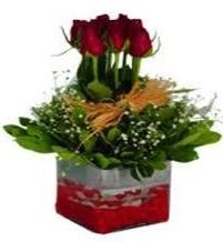 Muş çiçek gönderme  7 adet mika yada cam vazoda gül tanzimi