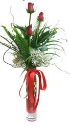 Muş çiçek siparişi sitesi  3 adet kirmizi gül vazo içerisinde