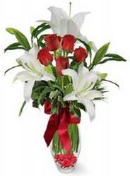 Muş çiçek siparişi vermek  5 adet kirmizi gül ve 3 kandil kazablanka
