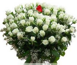 Muş internetten çiçek satışı  100 adet beyaz 1 adet kirmizi gül buketi