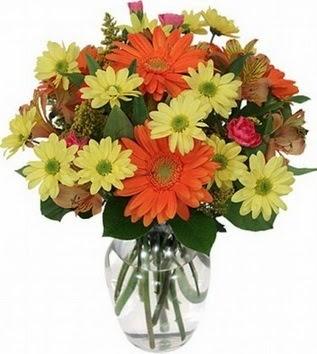 Muş hediye sevgilime hediye çiçek  vazo içerisinde karışık mevsim çiçekleri