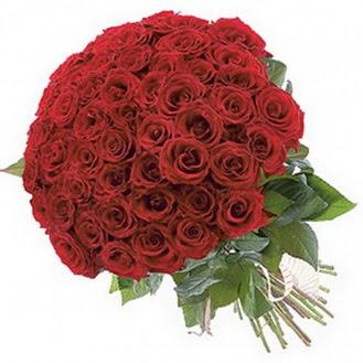 Muş güvenli kaliteli hızlı çiçek  101 adet kırmızı gül buketi modeli