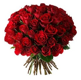 Muş çiçek , çiçekçi , çiçekçilik  33 adet kırmızı gül buketi