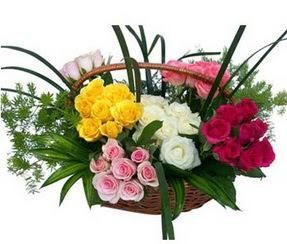 Muş ucuz çiçek gönder  35 adet rengarenk güllerden sepet tanzimi