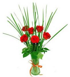 Muş çiçek , çiçekçi , çiçekçilik  6 adet kırmızı güllerden vazo çiçeği