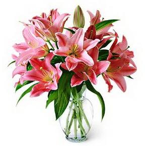 3 dal kazablanka görsel vazosu  Muş internetten çiçek siparişi