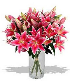 4 dal cazablanca görsel vazosu  Muş çiçekçi mağazası