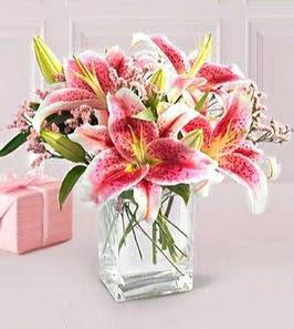 2 dal kazablanka görsel vazosu  Muş çiçek siparişi sitesi