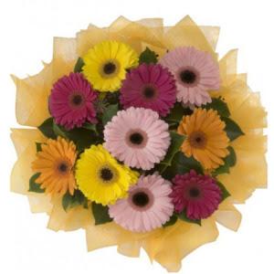 Muş İnternetten çiçek siparişi  11 adet karışık gerbera çiçeği buketi