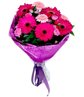 Muş çiçek siparişi sitesi  karışık gerbera çiçeği buketi
