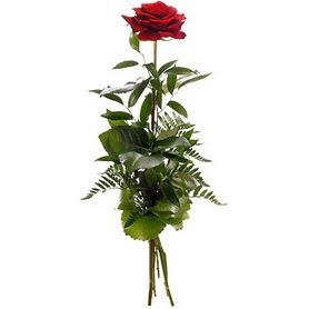 Muş online çiçekçi , çiçek siparişi  1 adet kırmızı gülden buket