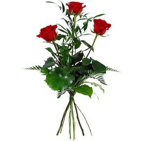Muş uluslararası çiçek gönderme  3 adet kırmızı gülden buket