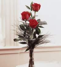 Muş internetten çiçek satışı  Vazoda 3 adet güzel gül