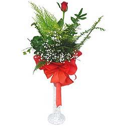Muş anneler günü çiçek yolla  Cam vazoda masum tek gül