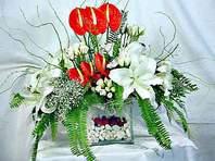 Muş çiçek mağazası , çiçekçi adresleri  Anthurim Kazablanka  gül