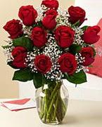 Sevgilime hediye 9 adet 1.ci kalite gül  Muş anneler günü çiçek yolla