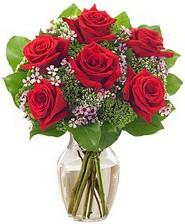Kız arkadaşıma hediye 6 kırmızı gül  Muş internetten çiçek siparişi