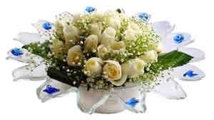 Muş çiçek online çiçek siparişi  11 adet Beyaz güller özel cam tanzim