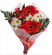 Mevsim çiçeklerinden görsel buket  Muş çiçekçiler