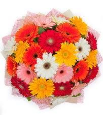 15 adet renkli gerbera buketi  Muş yurtiçi ve yurtdışı çiçek siparişi