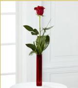 Vazo içerisinde 1 adet kırmızı gül  Muş internetten çiçek siparişi