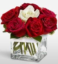 Tek aşkımsın çiçeği 8 kırmızı 1 beyaz gül  Muş uluslararası çiçek gönderme